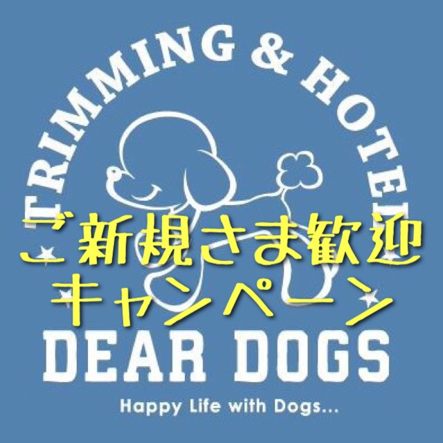 大田区洗足池のペットトリミングサロンDEAR DOGS