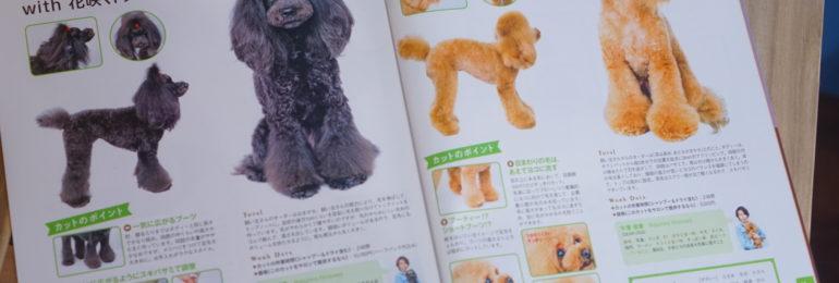 メディア掲載情✂大田区洗足池のペットトリミングサロンDEAR DOGS